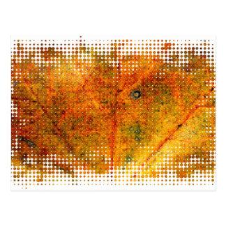 Fall maple leaf texture 2 postcard