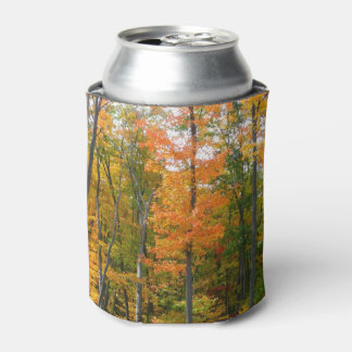 Fall Maple Trees Autumn Nature Photography Can Cooler