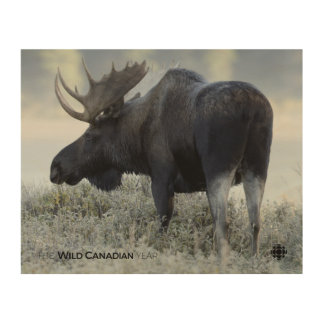 Fall - Moose Wood Wall Decor