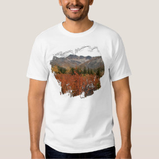 Fall Mountain Landscape Tee Shirts