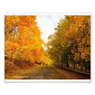 Fall neighbourhood photo