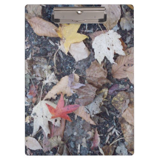 Fall on the Ground Clipboard