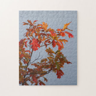 Fall On The Lake Jigsaw Puzzle