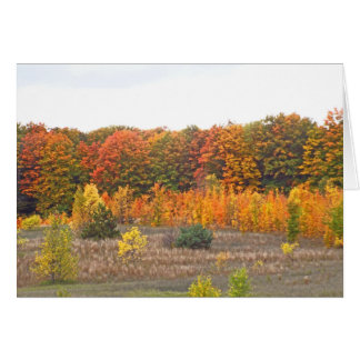 """FALL PALETTE IN THE COUNTRY"" (PHOTOG.) GREETING CARD"