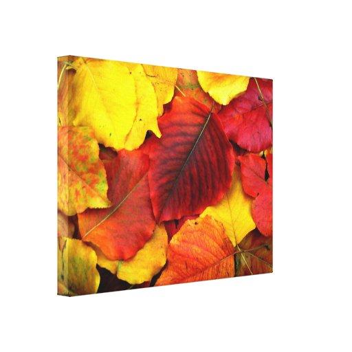 Fall Pear Leaves Canvas Print