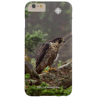 Fall - Peregrine Falcon Barely There iPhone 6 Plus Case