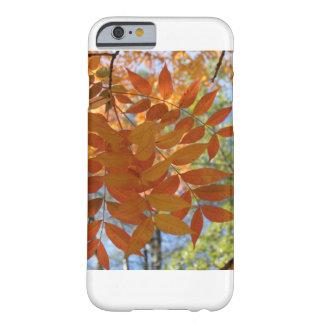 Fall phone case