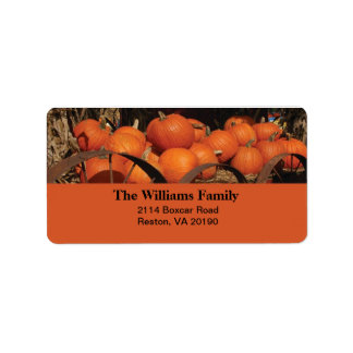 Fall Pumpkins Address Label