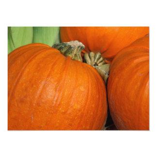Fall Pumpkins and Maize Corn 14 Cm X 19 Cm Invitation Card