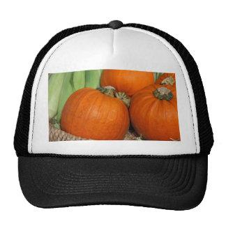 Fall Pumpkins and Maize Corn Mesh Hat