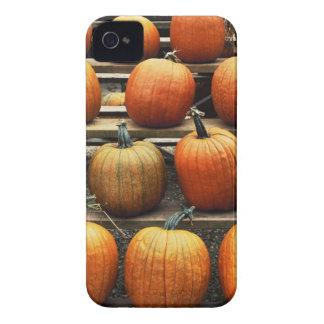 Fall pumpkins Case-Mate iPhone 4 cases