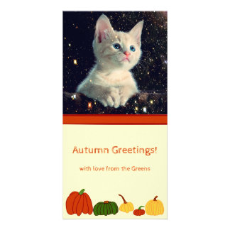 Fall Pumpkins: Customized Photocard #3 Photo Greeting Card