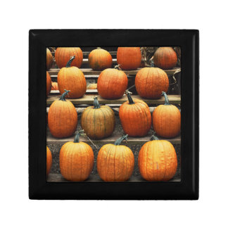 Fall pumpkins gift box