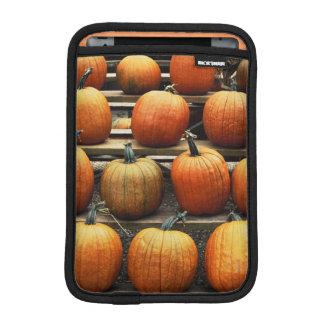 Fall pumpkins iPad mini sleeves