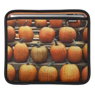 Fall pumpkins iPad sleeve