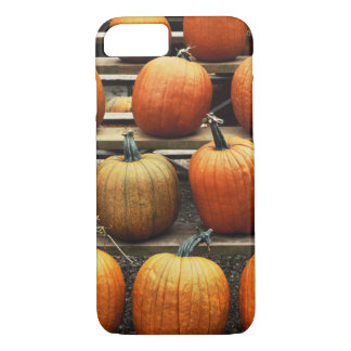 Fall pumpkins iPhone 7 case