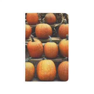 Fall pumpkins journal