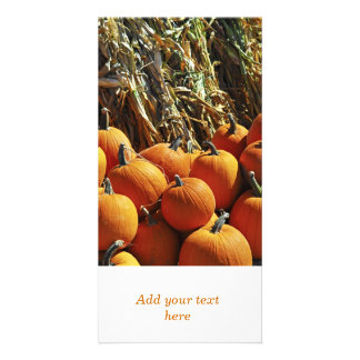 Fall Pumpkins Picture Card