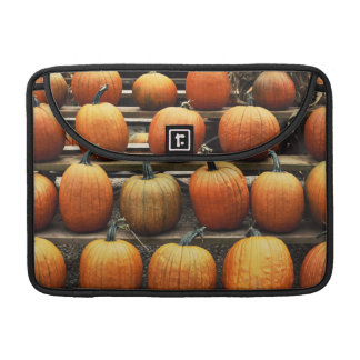 Fall pumpkins sleeve for MacBook pro