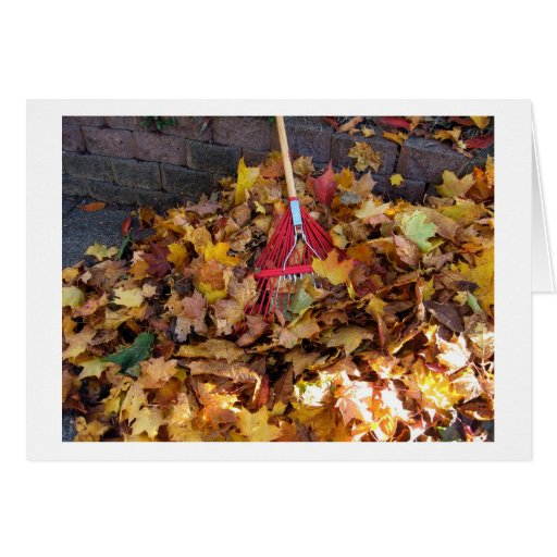 Fall - Raking the Leaf Harvest , Photograph Card