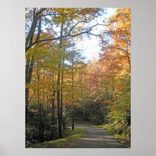 Fall Roadway near Gatlinburg TN Posters