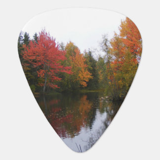 Fall Scenery Guitar Pick