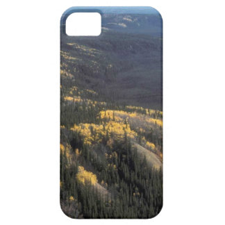 FALL SCENIC iPhone 5 COVERS