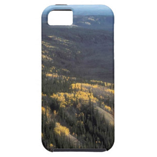 FALL SCENIC iPhone 5 CASE