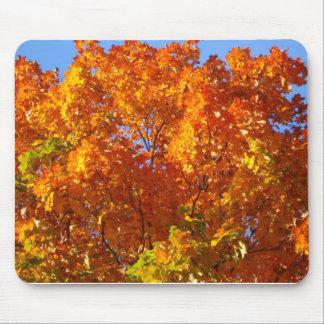 Fall Seasons MousePad
