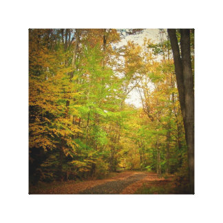 Fall Seasons Stretched Canvas Woods Path Gallery Wrap Canvas