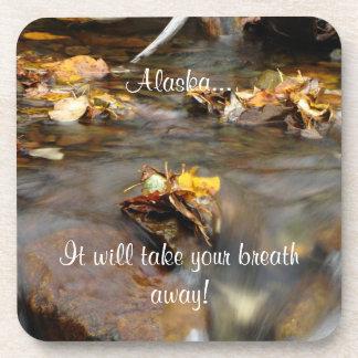 Fall Stream; Alaska Souvenir Drink Coasters