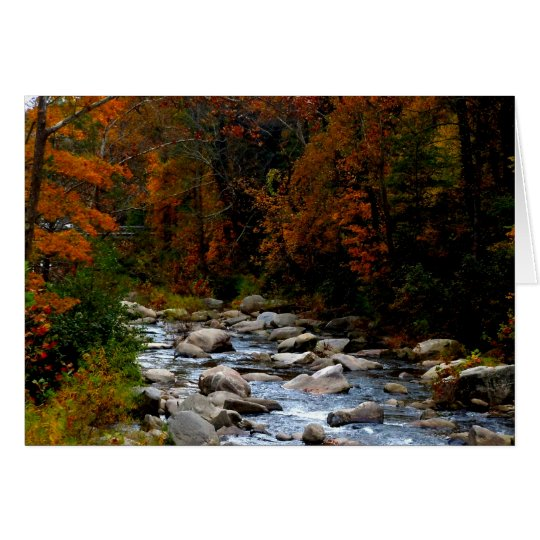 Fall stream Blank Greeting Crad Card