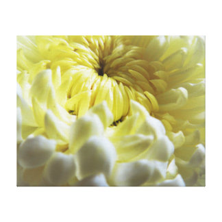Fall-Themed Canvas Print - Chrysanthemum Closeup
