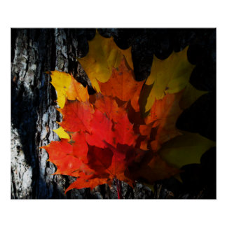 Fall-Themed Poster - Maple Leaves