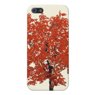 Fall Tree Case iPhone 5 Case