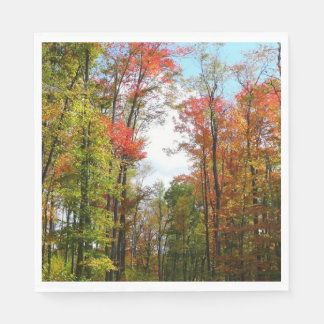 Fall Trees and Blue Sky Autumn Nature Photography Paper Napkin