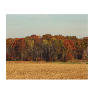 Fall Trees And Corn Field Wooden Wall Art