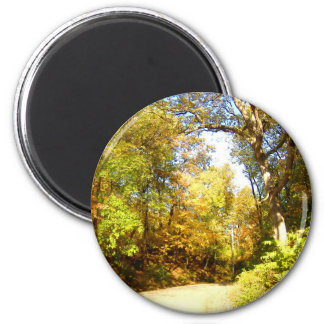 Fall Trees at Bradley Park 2 6 Cm Round Magnet