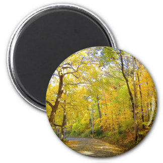 Fall Trees at Bradley Park 6 Cm Round Magnet
