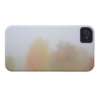 Fall trees shrouded in mist iPhone 4 cover