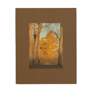 Fall Trees Wood Wall Art