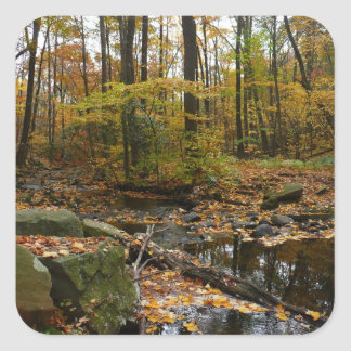 Fall Waterfall and Creek Pennsylvania Nature Photo Square Sticker