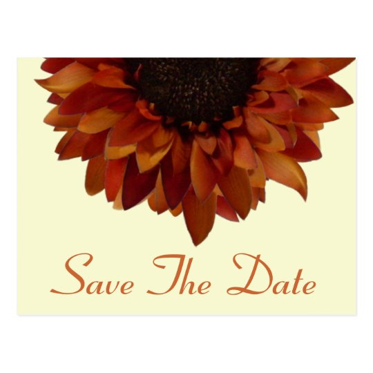 Fall Wedding Save The Date Sunflower Postcard