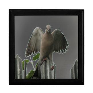 Fallen Angel Dove Gift Box
