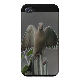 Fallen Angel Dove  iPhone 4/4S Case
