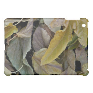 Fallen autumn leaves iPad mini cover