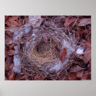 Fallen Bird Nest Poster