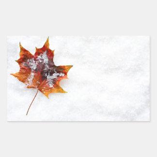 Fallen Leaf in the Snow Rectangular Sticker