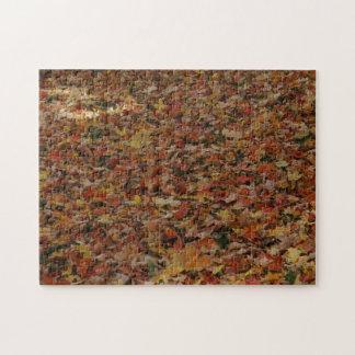 Fallen Leaves Jigsaw Puzzle