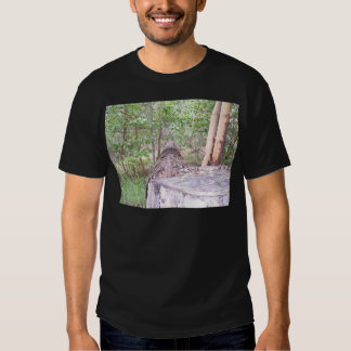 Fallen Tree with Stump in Forest Tshirts